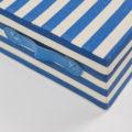 Caja de rayas azules y blancas-3